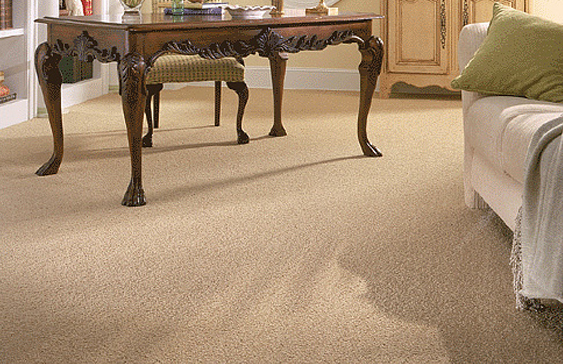 How To Care For Your Karastan Carpet?